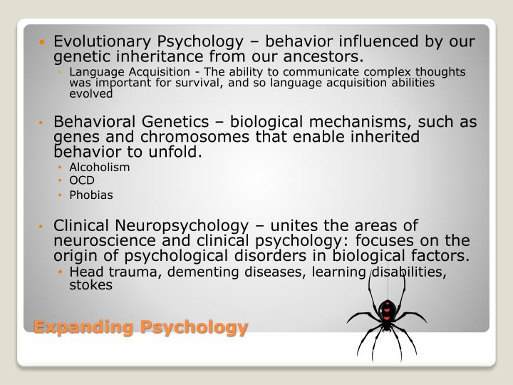 how psychologists explain human behavior Cognitive psychology looks at the ways in which we can explain disorders and behavior through cognitive processes learn about the cognitive approach and the studies, experiments and treatments relating to it.