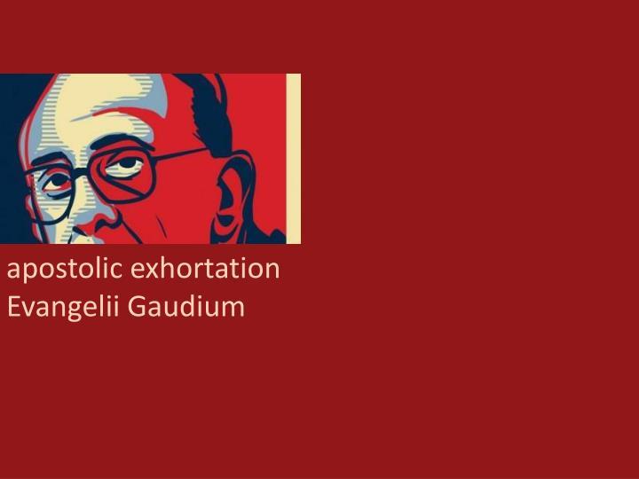 apostolic exhortation E