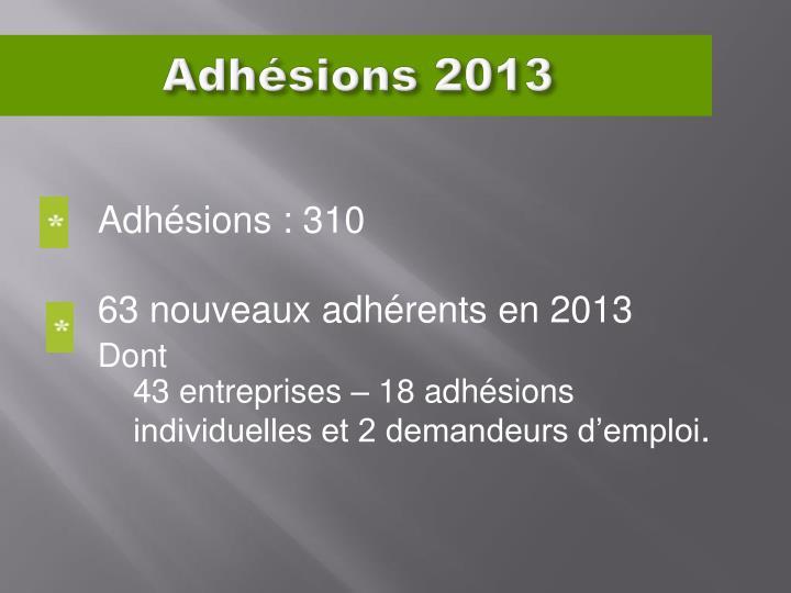 Adhésions 2013