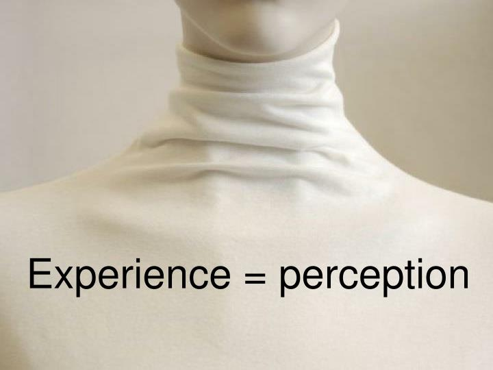 Experience = perception