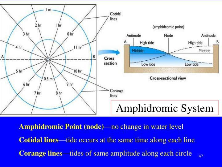 Amphidromic System