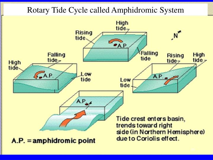 Rotary Tide Cycle called Amphidromic System