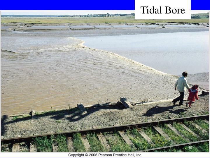 Tidal Bore