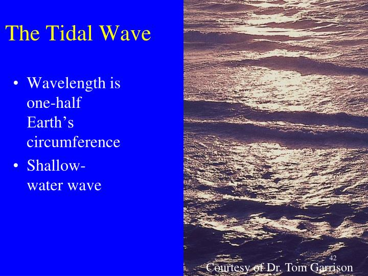 The Tidal Wave