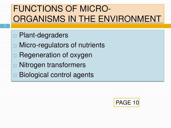 FUNCTIONS OF MICRO-ORGANISMS IN THE ENVIRONMENT