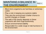 maintaing a balance in the environment