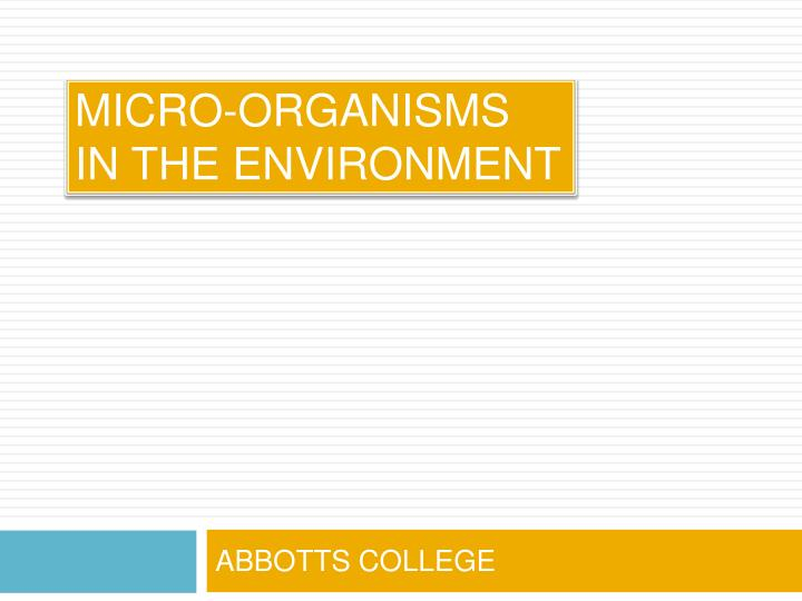 Micro organisms in the environment