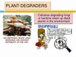 plant degraders