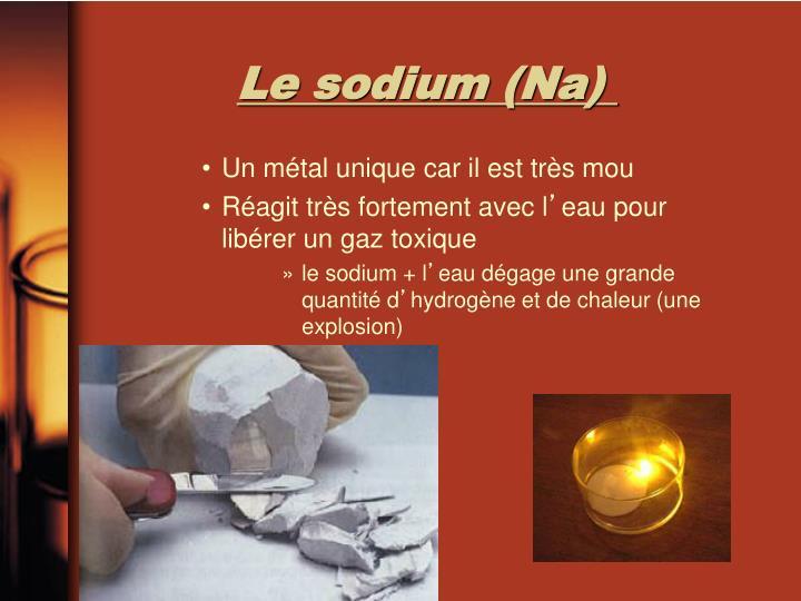 Le sodium (Na)