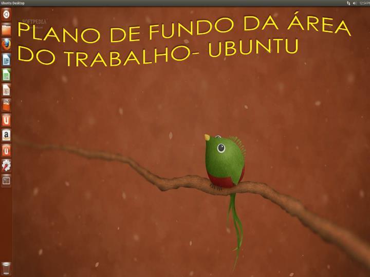 PLANO DE FUNDO DA REA DO TRABALHO- UBUNTU