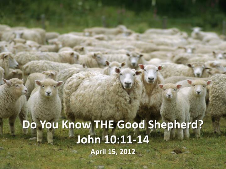 Do you know the good shepherd john 10 11 14 april 15 2012