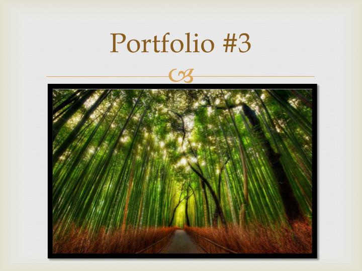 Portfolio #3