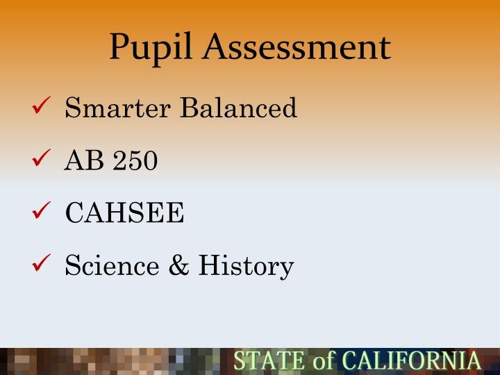 Pupil Assessment