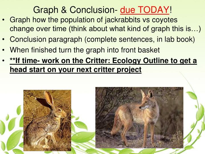 Graph & Conclusion-