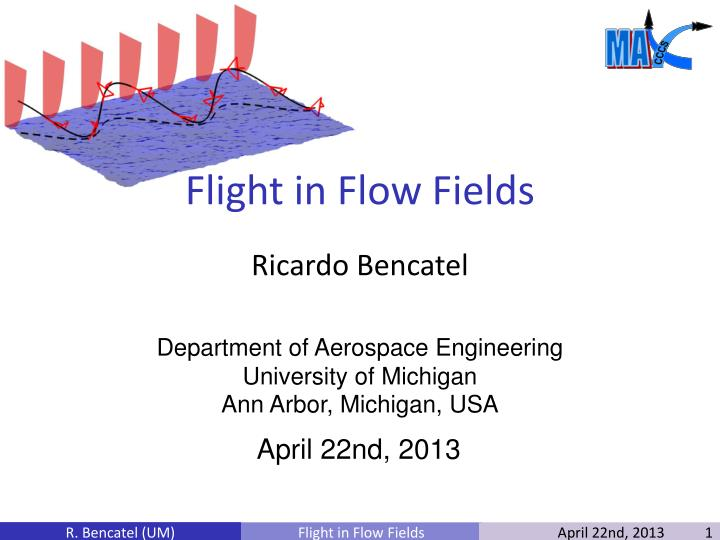 Flight in flow fields