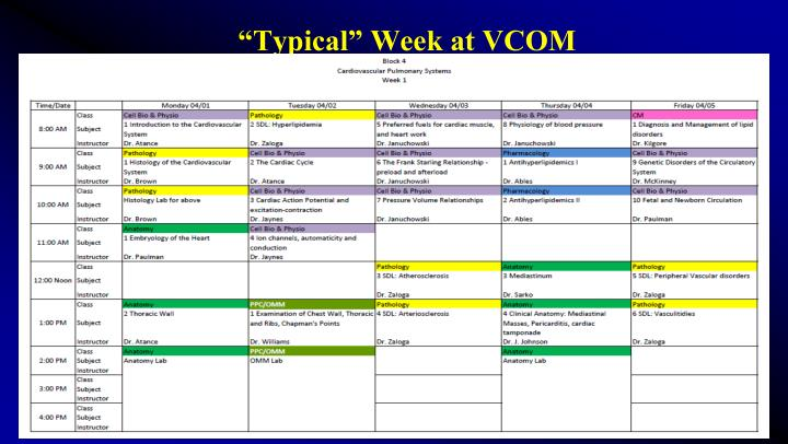 """Typical"" Week at VCOM"