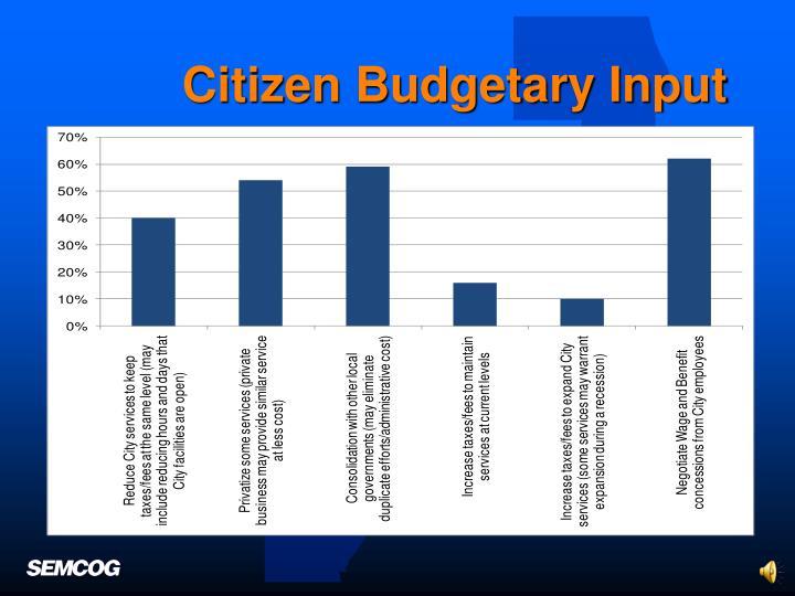 Citizen Budgetary Input