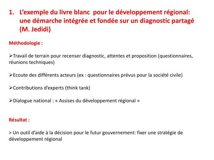 L'exemple du livre blanc  pour le développement régional: une démarche intégrée et fondée sur un diagnostic partagé (M.