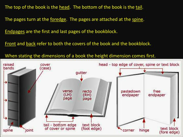 The top of the book is the