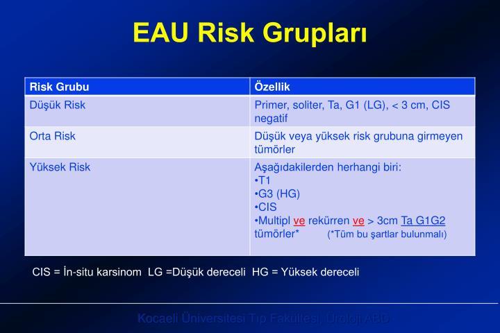 EAU Risk Grupları