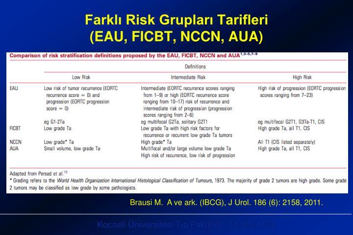 Farklı Risk Grupları Tarifleri