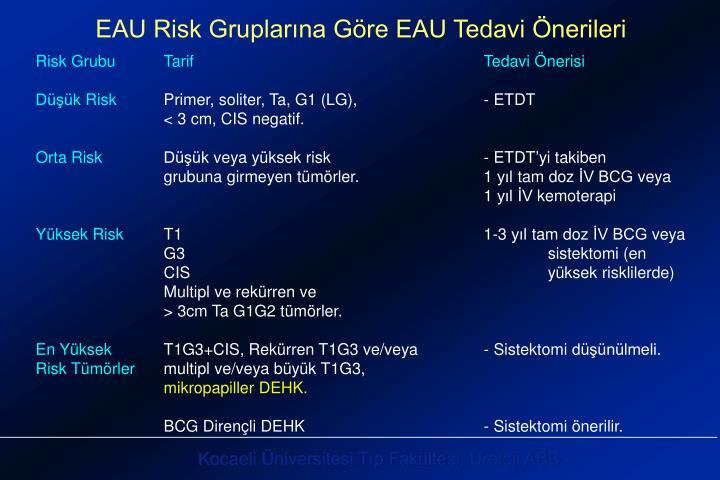 EAU Risk Gruplarına Göre EAU Tedavi Önerileri