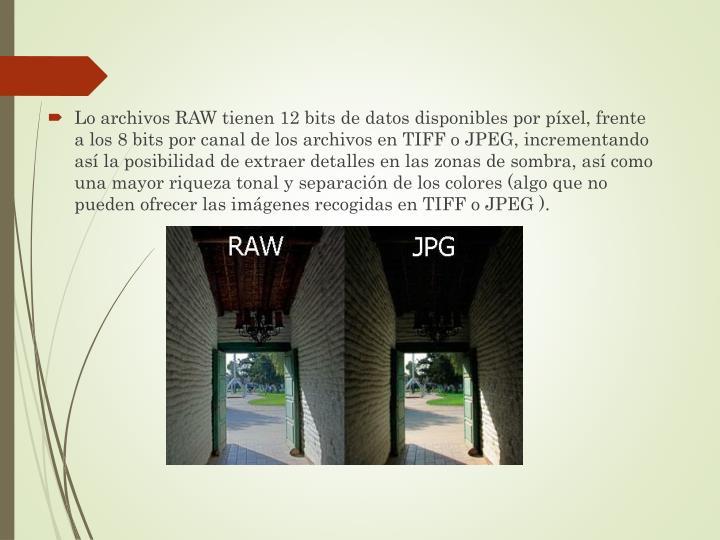 Lo archivos RAW tienen 12 bits de datos disponibles por píxel, frente a los 8 bits por canal de los archivos en TIFF o JPEG, incrementando así la posibilidad de extraer detalles en las zonas de sombra, así como una mayor riqueza tonal y separación de los colores (algo que no pueden ofrecer las imágenes recogidas en TIFF o JPEG ).