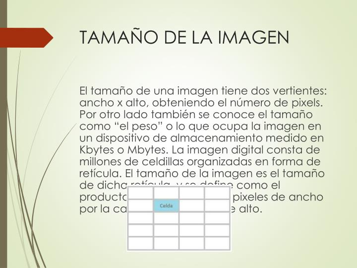 TAMAÑO DE LA IMAGEN