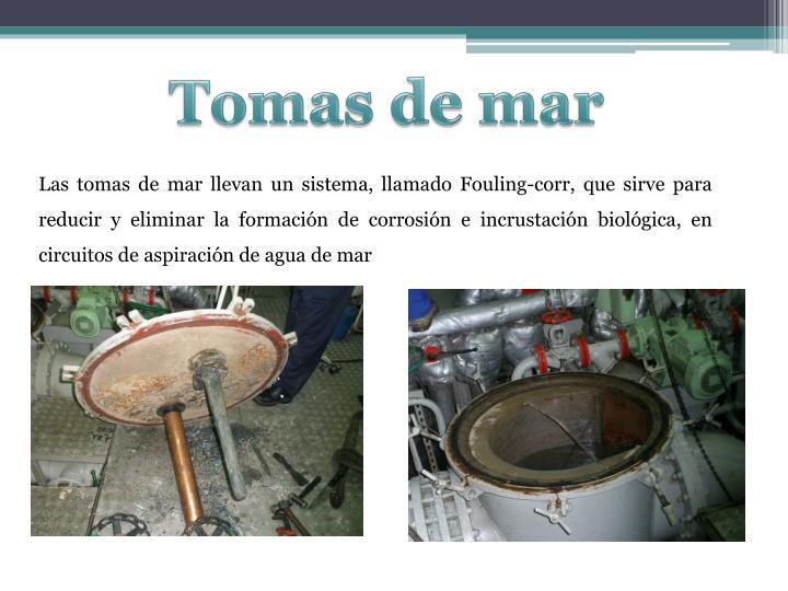 Tomas de mar