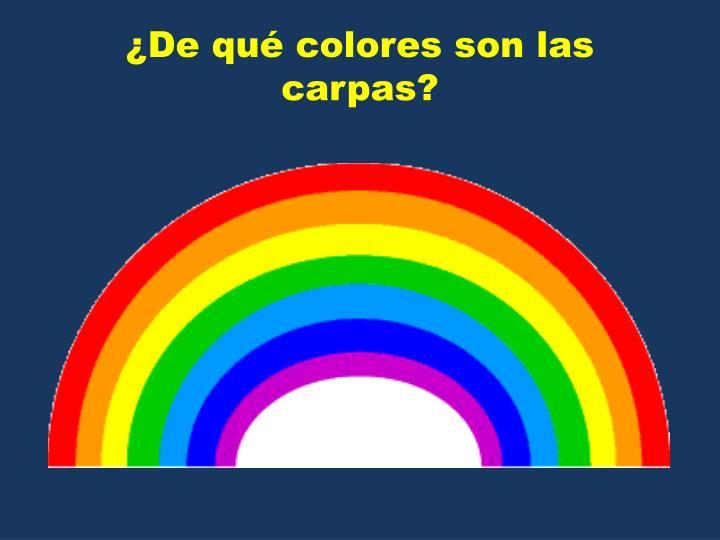 ¿De qué colores son las carpas?