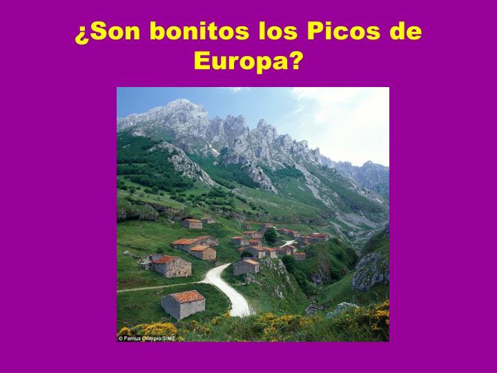 ¿Son bonitos los Picos de Europa?