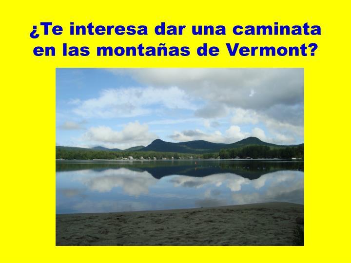 ¿Te interesa dar una caminata en las montañas de Vermont?