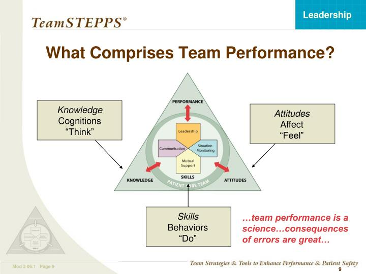 What Comprises Team Performance?