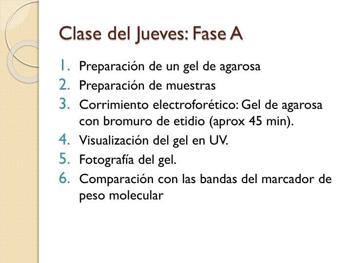Clase del Jueves: Fase A
