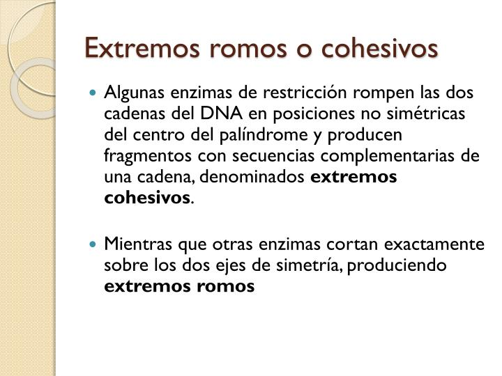 Extremos romos o cohesivos