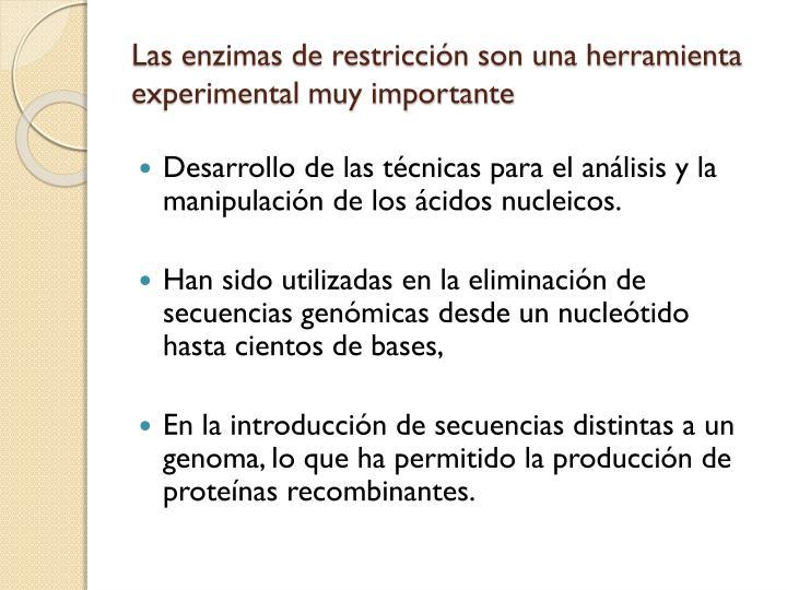 Las enzimas de restricción son una herramienta experimental muy importante