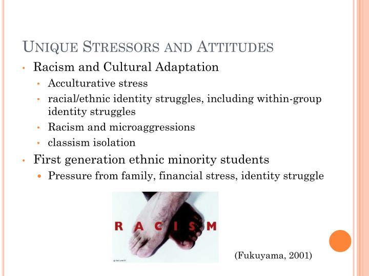 Unique Stressors and Attitudes