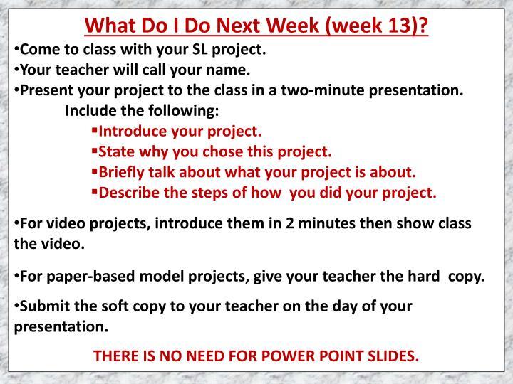 What Do I Do Next Week (week 13)?