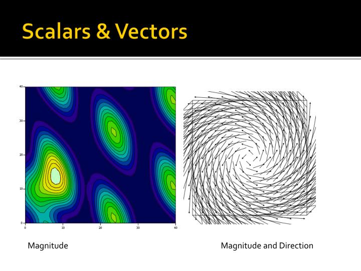 Scalars vectors