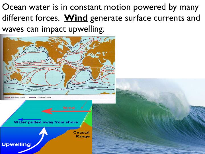 Ocean water is in constant motion powered by many different forces.
