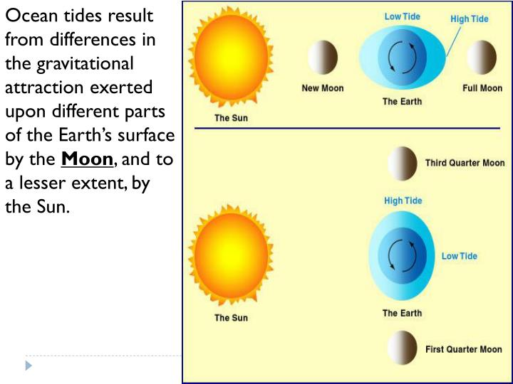 Ocean tides result from differences in the gravitational attraction exerted upon different parts of the Earth's surface by the