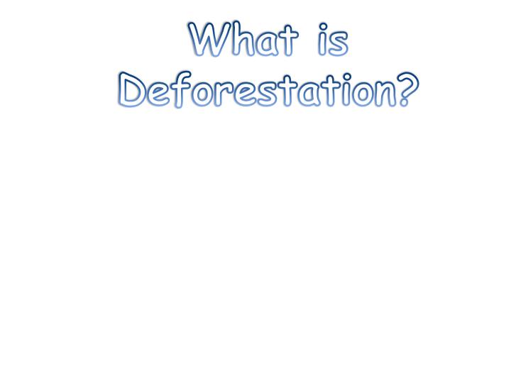 What is Deforestation?