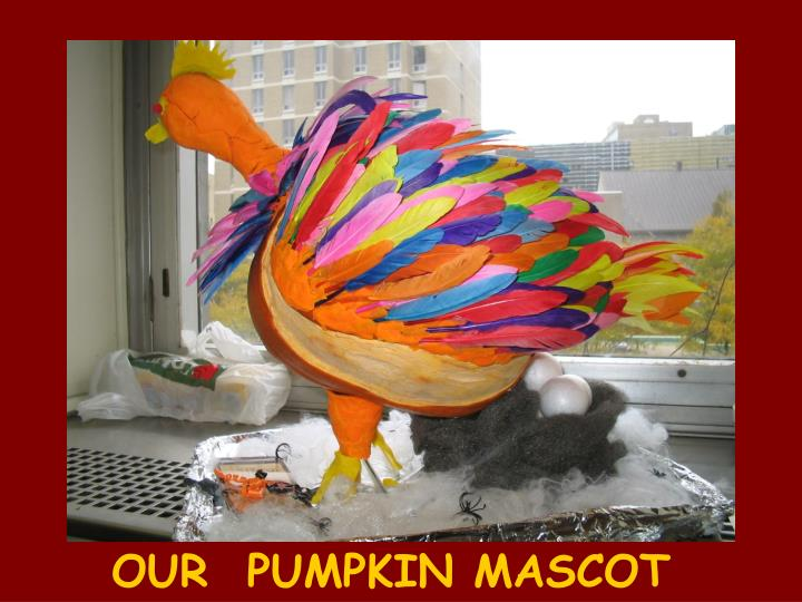 OUR  PUMPKIN MASCOT