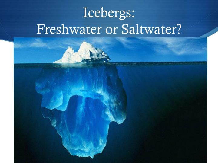 Icebergs: