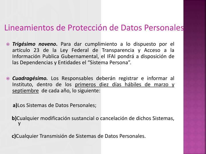 Lineamientos de Protección de Datos Personales