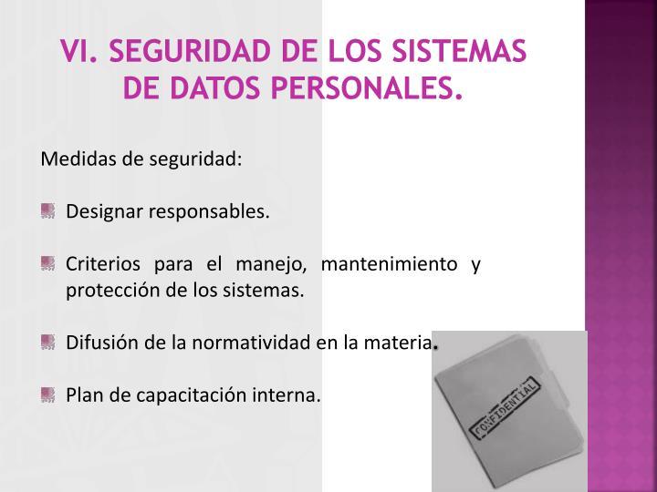 vi. seguridad de los sistemas de datos personales.