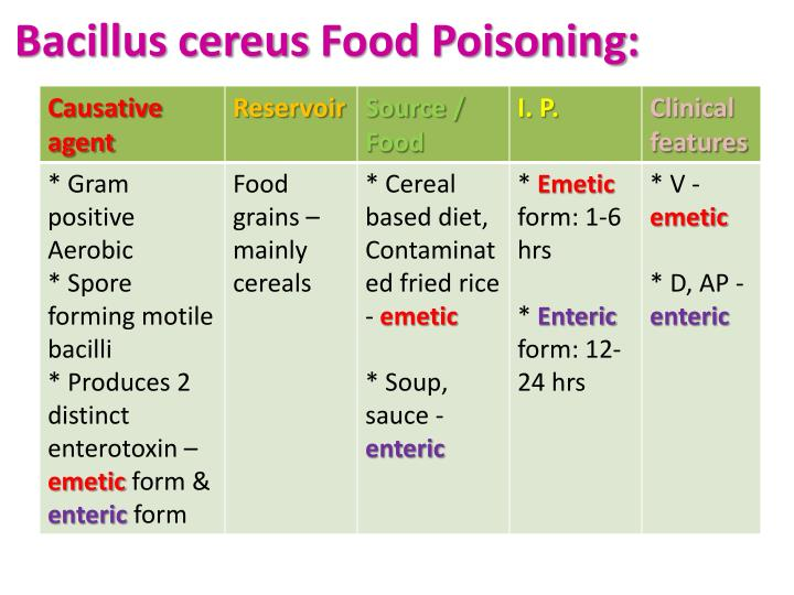 Bacillus cereus Food Poisoning: