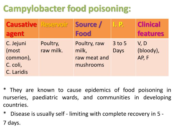 Campylobacter food poisoning: