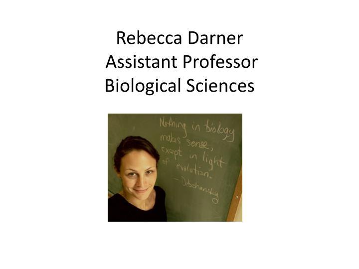 Rebecca Darner