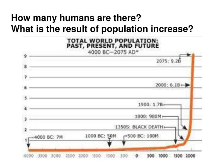 How many humans are there?